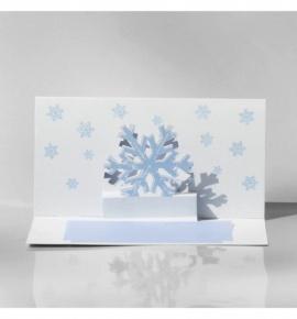 Novoroční přání - PF 2021 - H13-121